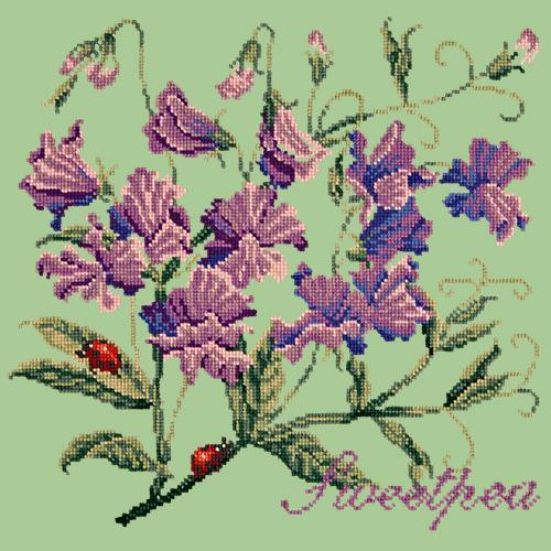 Sweetpea Needlepoint Kit Elizabeth Bradley Design Pale Green