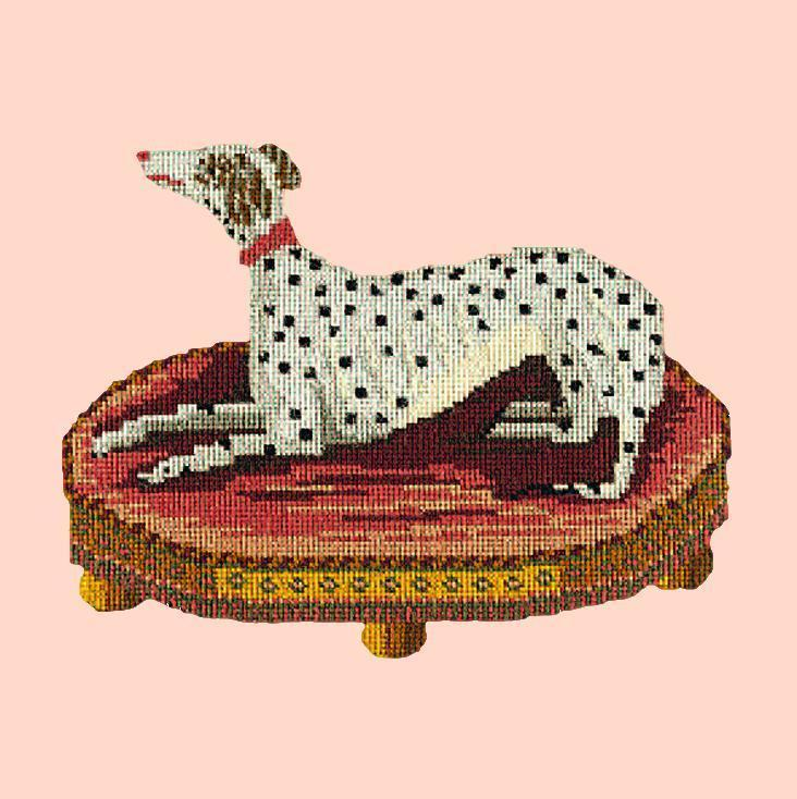 The Spotted Dog Needlepoint Kit Elizabeth Bradley Design Salmon Pink