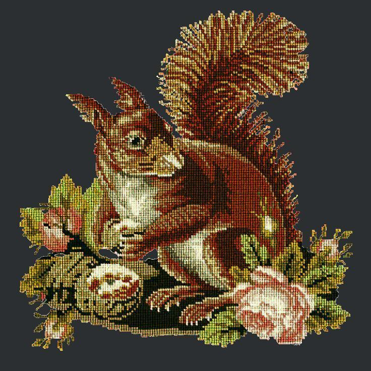 The Squirrel Needlepoint Kit Elizabeth Bradley Design Black