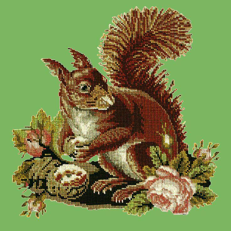 The Squirrel Needlepoint Kit Elizabeth Bradley Design Grass Green