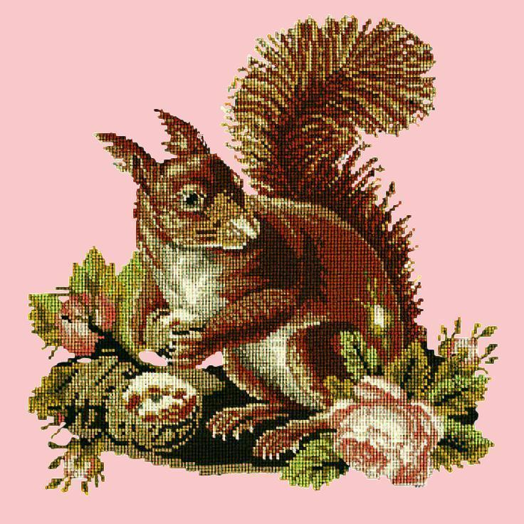 The Squirrel Needlepoint Kit Elizabeth Bradley Design Pale Rose
