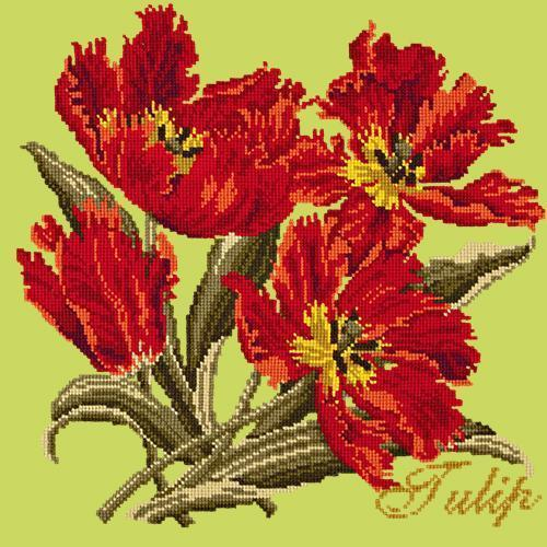 Tulip Needlepoint Kit Elizabeth Bradley Design Pale Lime