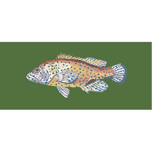 Vermilion Seabass Needlepoint Kit Elizabeth Bradley Design Dark Green