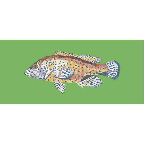 Vermilion Seabass Needlepoint Kit Elizabeth Bradley Design Grass Green