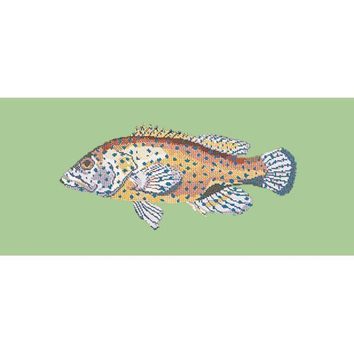 Vermilion Seabass Needlepoint Kit Elizabeth Bradley Design Pale Green