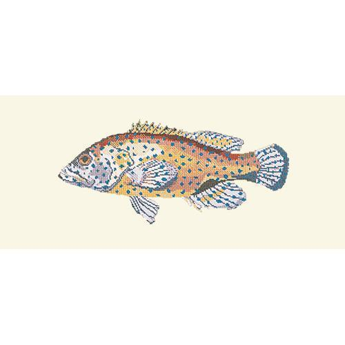 Vermilion Seabass Needlepoint Kit Elizabeth Bradley Design Winter White