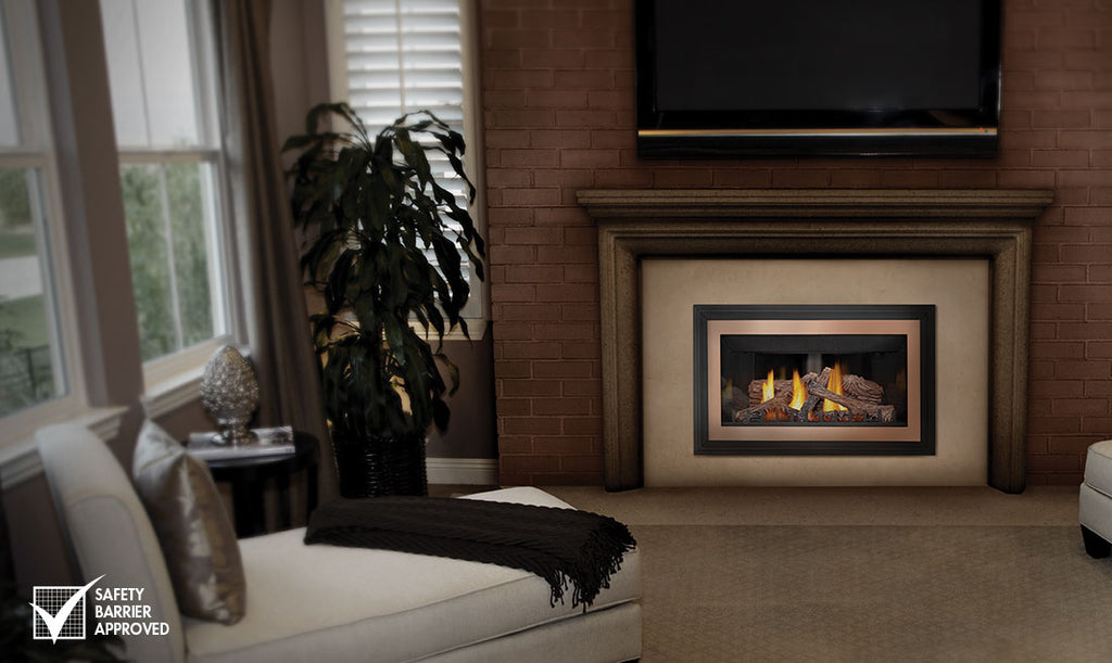 Napoleon Inspiration™ Series Direct Vent Gas Inserts GDIZC - ExceptionalFire