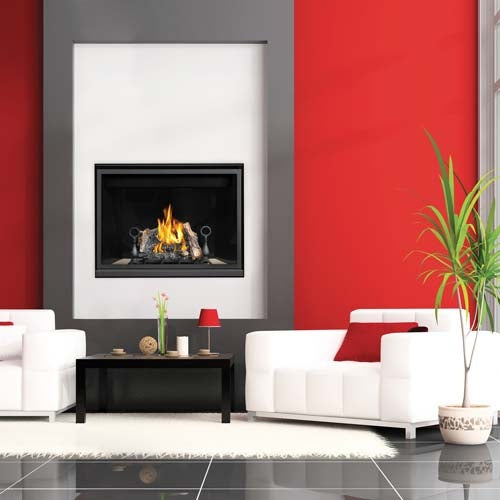 "Napoleon HD Series® 40"" Gas Fireplace HD40 - ExceptionalFire"