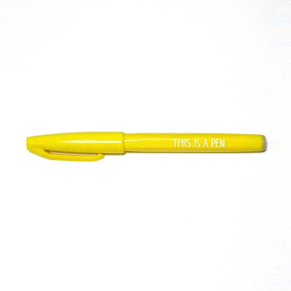 THIS IS A PEN