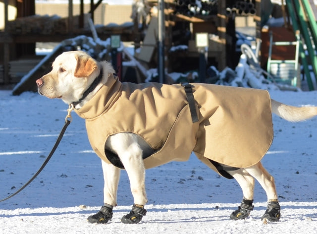 Thermal Dog Coat