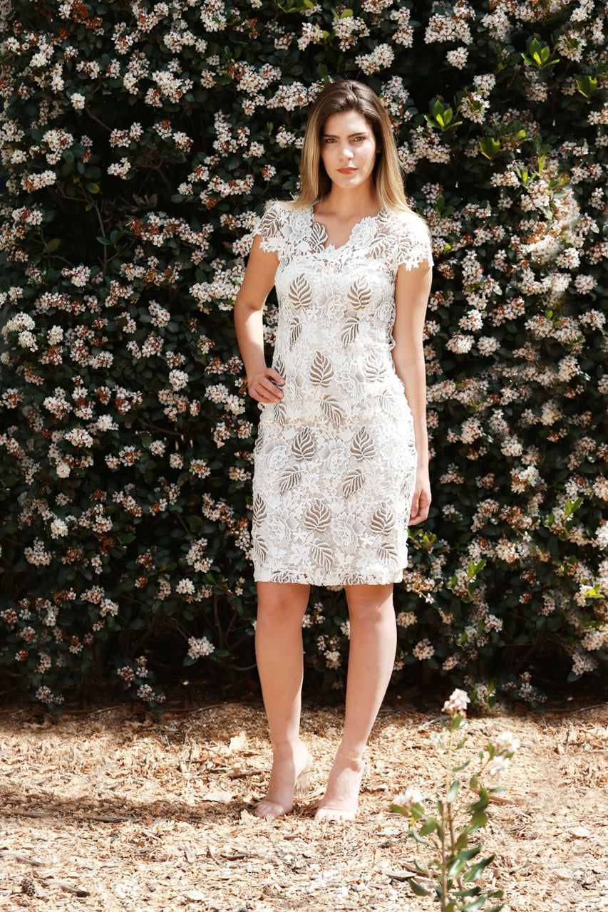 Lily - Lace Sheath Dress