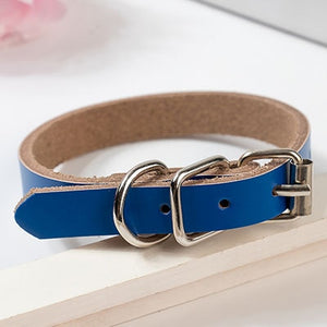 Genuine Leather Puppy Dog Collar