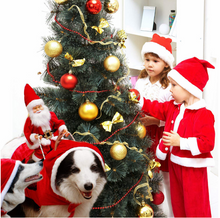 Load image into Gallery viewer, 【Hot Sale Today! Up to 50% Discount!】Christmas Santa Dog Costume