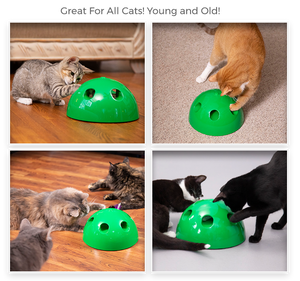'Peek-a-Meow' Interactive Cat Toy
