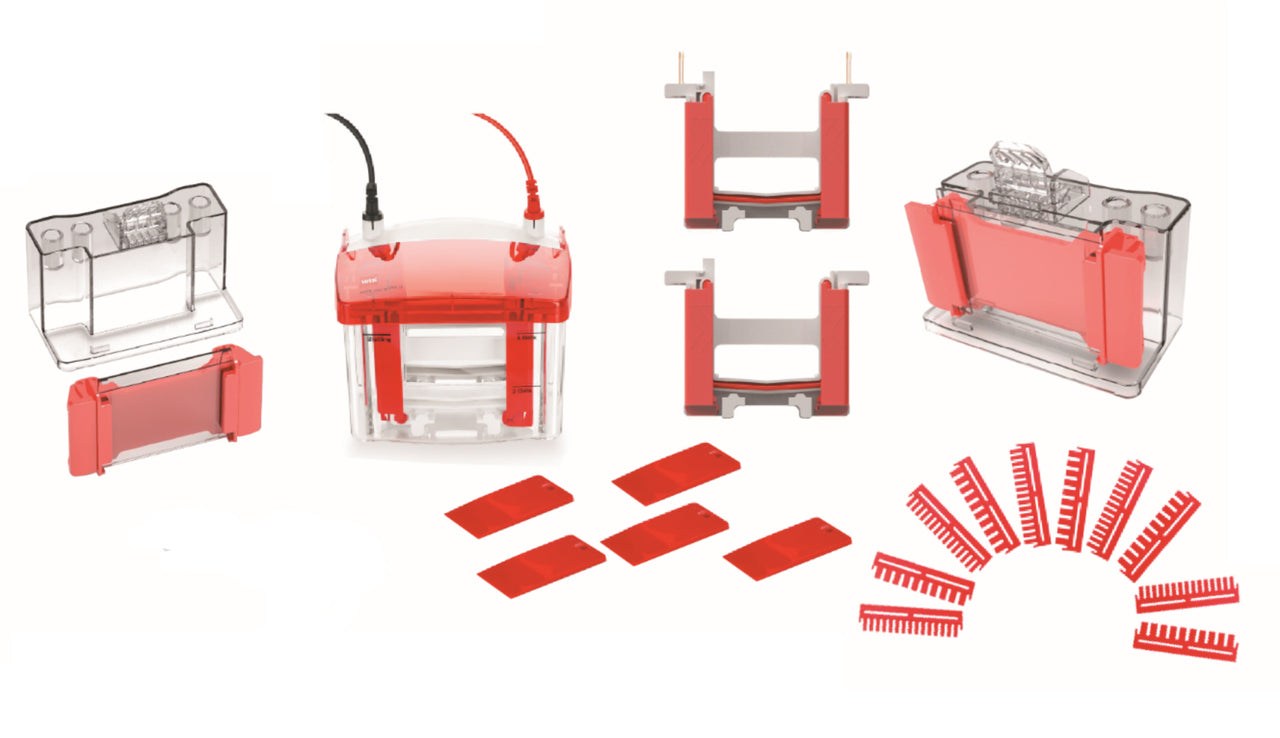 Mini Easy Vertical Electrophoresis Cell