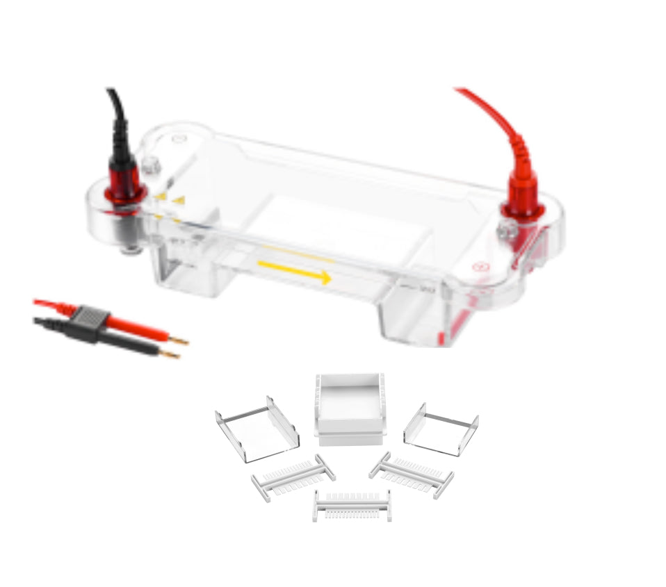 Mini DNA Horizontal Electrophoresis Cell