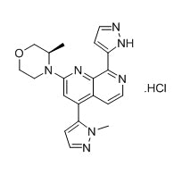 BAY-1895344.HCl Chemical Formula: C20H22N7OCl Molecular Weight: 411.9 CAS#: 1876467-74-1 (free base) Purity: > 99% by HPLC Solubility: Soluble in DMSO