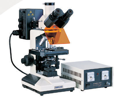 Reflected Fluorescence Microscopes