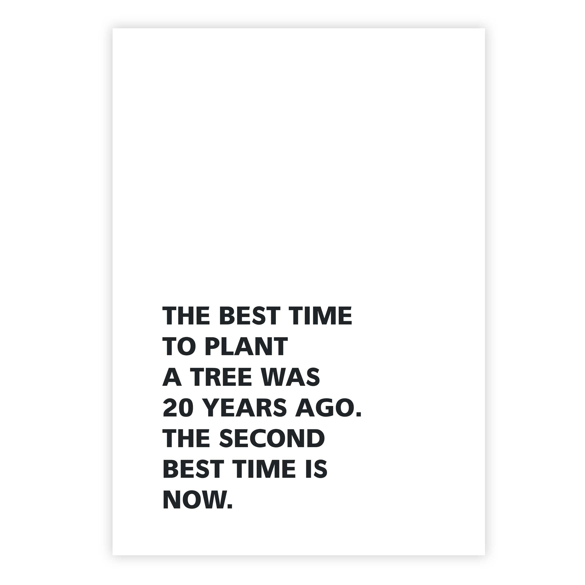 The best time to plant a tree was 20 years ago. The second best time is now