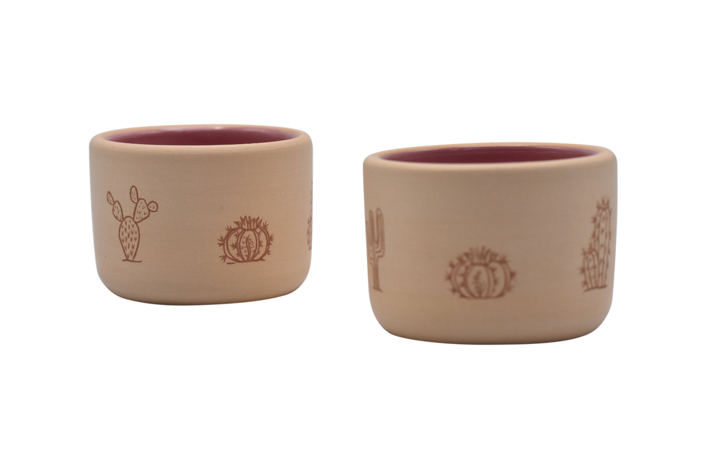 Set of 2 Cactus Engraved Sippers - Clay/Pink
