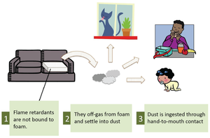 Memory Foam Dog Beds - Beware!