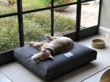 Load image into Gallery viewer, Clem on Berkeley Waterproof Orthopaedic Dog Bed
