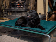 Load image into Gallery viewer, Raised Dog Beds by Berkeley
