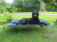 Load image into Gallery viewer, Raised Dog Bed - Made in the UK by Berkeley