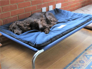 Raised Dog Bed with Non-Slip Polar Fleece Pad by Berkeley