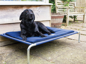 Large Raised Dog Beds