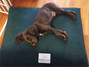 Polar Fleece Dog Bed Covers by Berkeley