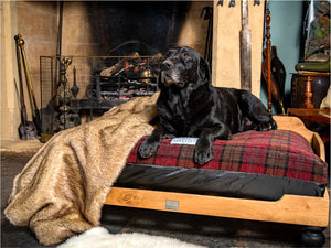 Wooden Dog Beds by Berkeley