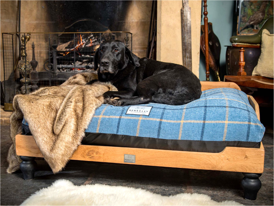 Luxury Wooden Dog Bed by Berkeley