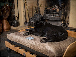Wooden Dog Bed and Orthopedic Mattress by Berkeley