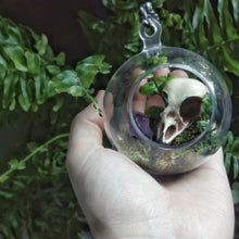 Load image into Gallery viewer, Woodland Terrarium magpie skull ornament
