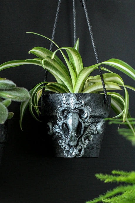 Bat Skull Hanging Planter