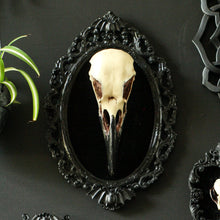 Load image into Gallery viewer, Raven Skull Wall Plaque