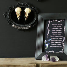 Load image into Gallery viewer, Two for joy magpie skull frame - goth wall decor