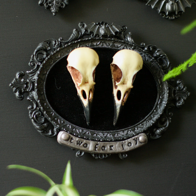 Two for joy magpie skull frame - goth wall decor