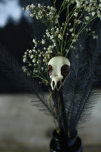 Load image into Gallery viewer, Bird Skull Floral Decorations Picks