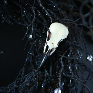 Detailed Crow Skull Replica Decoration Clip