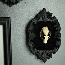 Load image into Gallery viewer, Framed Bat skull replica wall plaque