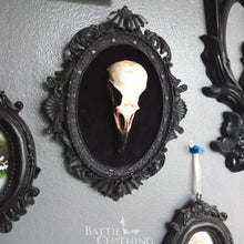 Load image into Gallery viewer, Crow skull replica in gothic frame with bat detail inlaid with black velvet