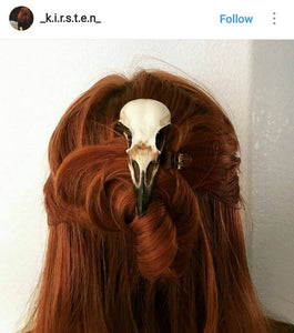Crow or Magpie skull hair clip
