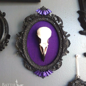 Framed crow skull with coloured silk inlay wall art
