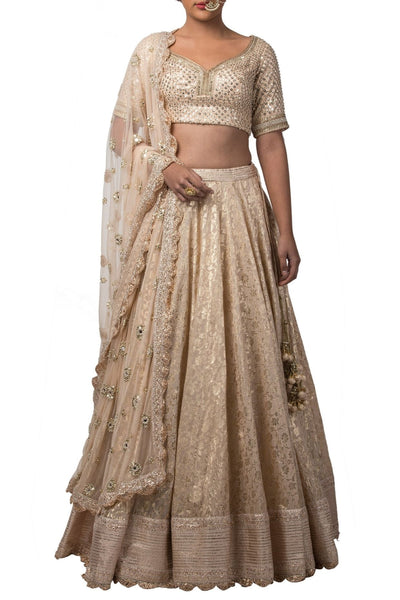 Champagne Chanderi Lehenga with Tulip Neck Blouse and embroidered Dupatta
