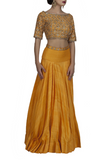 Orange Backless Embroidered Crop Top and Skirt Side look