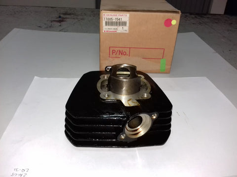11005-1541 CYLINDER-ENGINE AR80