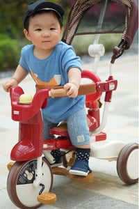 5 Popular Tricycle  Brands for Age 9 months up to 5 years