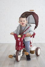 iimo ss tricycle #2 with canopy foldable eternity red